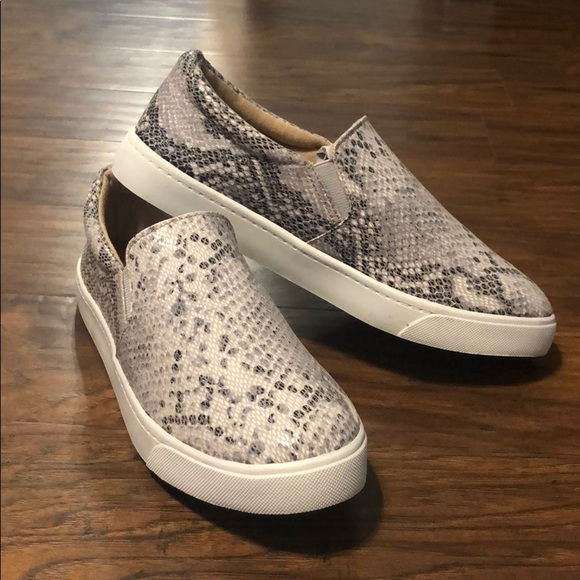 Soda Shoes | Reign Snakeskin Sneaker